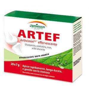 sport62_integra1_artef